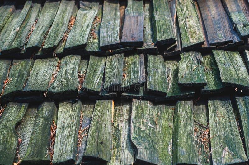 Bakgrund från gammalt med grön mossa att sörja rektangulära bräden som tjänar som att täcka taket arkivfoton