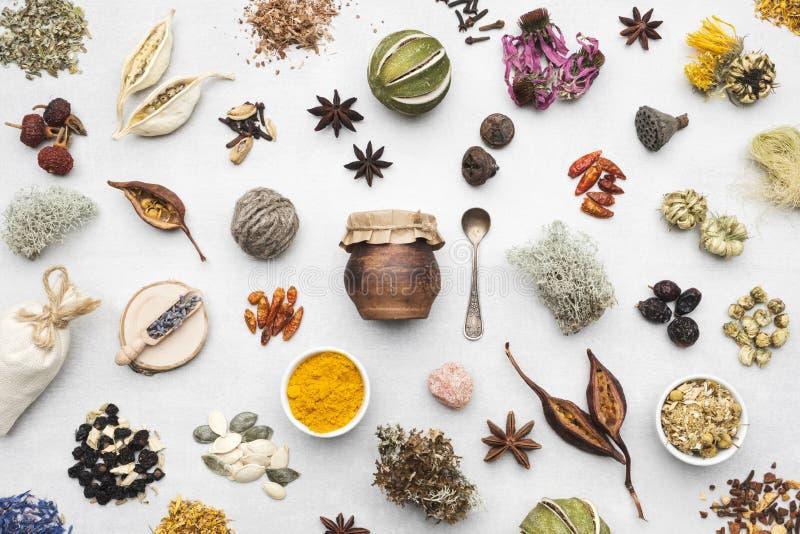 Bakgrund från torra medicinska örter, växter, rotar, ingredienser för framställning av boter för växt- medicin arkivbilder