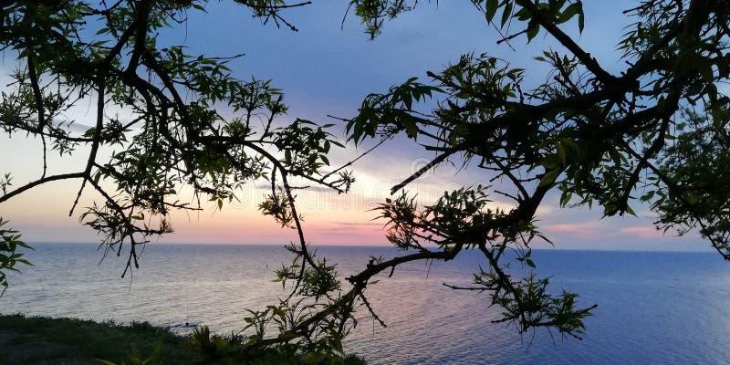 Bakgrund Havslandskapet i röda, rosa, blåa purpurfärgade färger till och med filialerna av träd och buskar arkivfoton