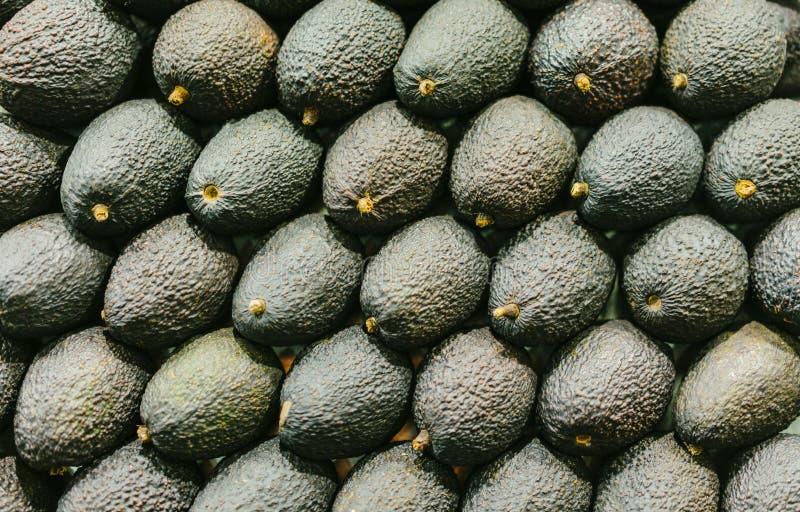 Bakgrund isolerad gruppgräsplanavokado i marknad; bästa sikt för ny sund vegetarisk frukt; tropisk ingrediensmat för guacamole arkivfoton