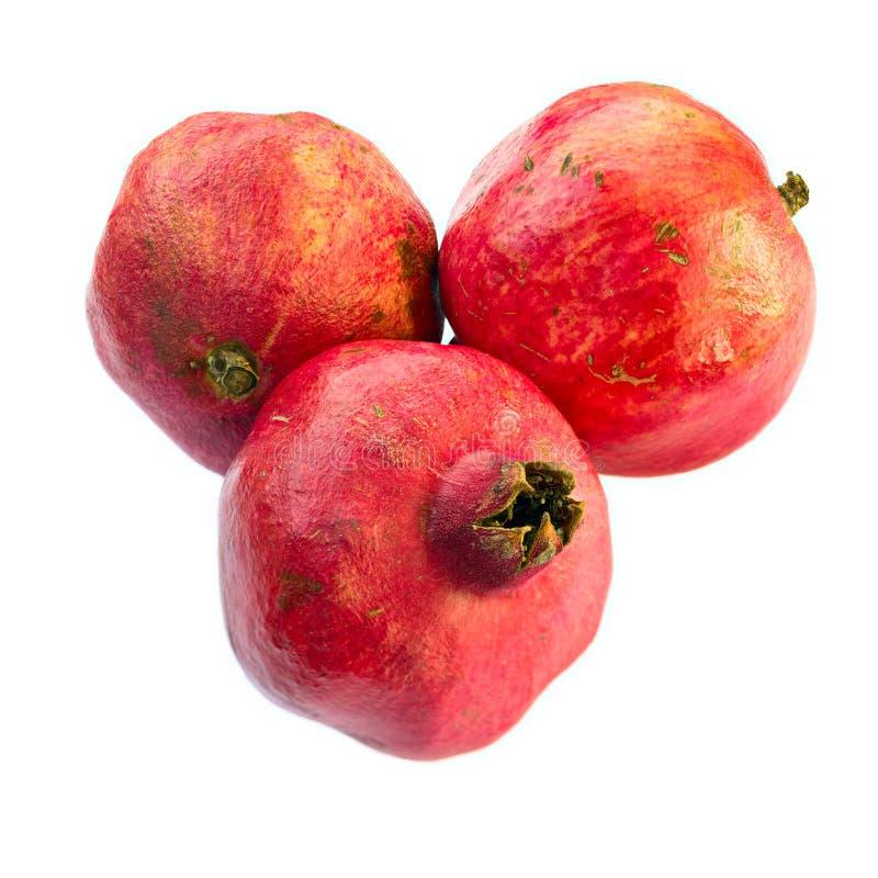 bakgrund isolerad white för pomegranates tre royaltyfri fotografi