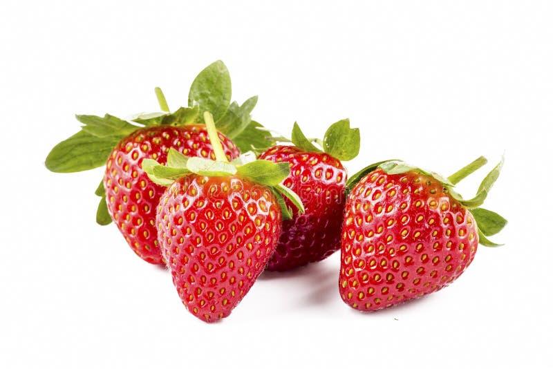 bakgrund isolerade jordgubbewhite Snabb bana arkivfoton