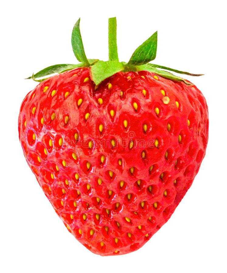 bakgrund isolerade jordgubbewhite Snabb bana royaltyfria bilder