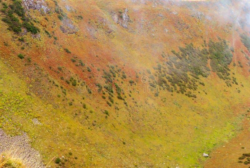 Bakgrund landskap - bergssida med färgrik vegetation royaltyfri foto