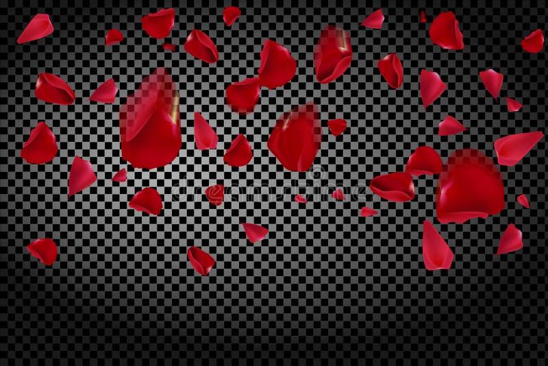 Bakgrund med att flyga röda roskronblad på en genomskinlig bakgrund vektor illustrationer