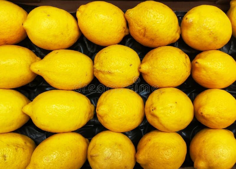 Bakgrund med citroner royaltyfria bilder