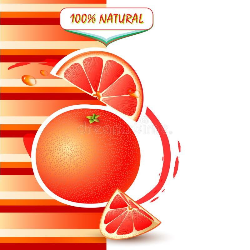 Bakgrund med den nya grapefrukten royaltyfri illustrationer