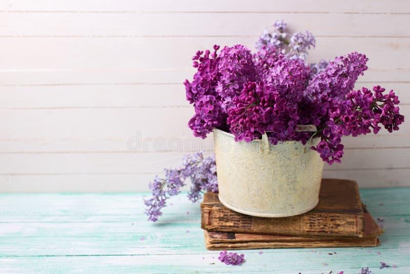 Bakgrund med den nya lilan blommar i bunke royaltyfri bild