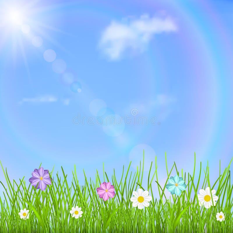 Bakgrund med himmel, solen, moln, regnbågen, gräs och blommor vektor illustrationer