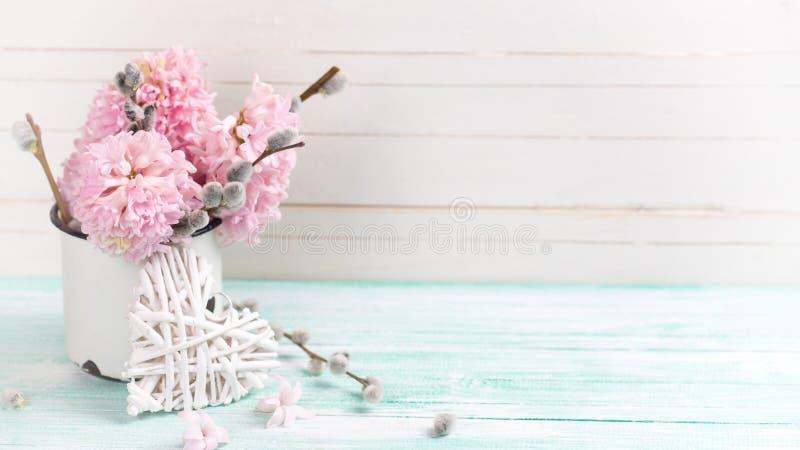 Bakgrund med hyacinter, pilblommor i åldrigt rånar och december royaltyfria bilder