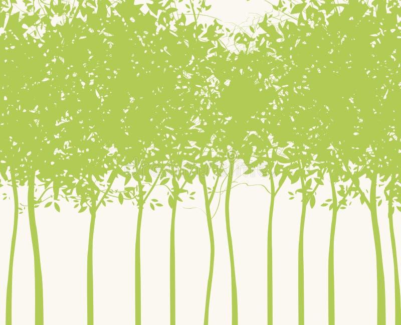 Bakgrund med konturer av unga gröna träd vektor illustrationer