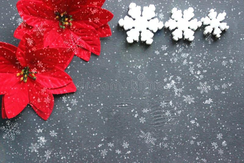 Bakgrund med kopieringsutrymme för lyckligt nytt år och glad jul Svart bakgrund med vita snöflingor och julstjärnablommor arkivbild