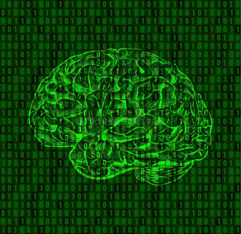 Bakgrund med nummer och hjärnan skissar royaltyfri illustrationer