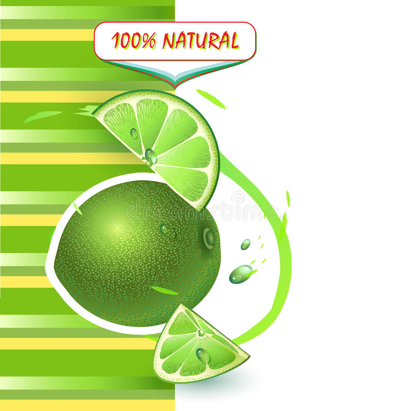 Bakgrund med ny limefrukt royaltyfri illustrationer
