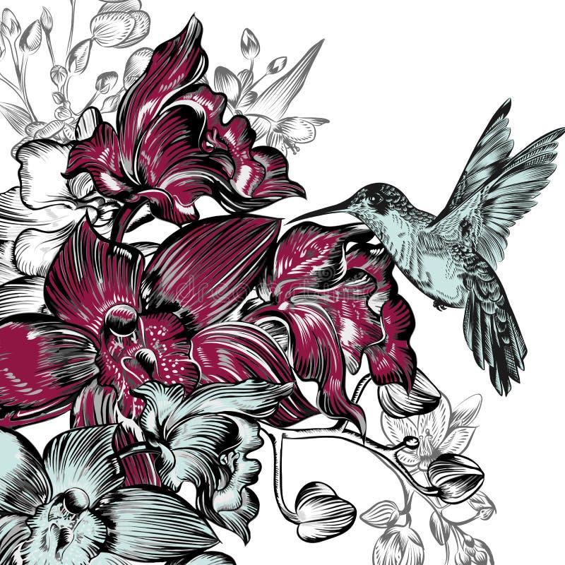 Bakgrund med orkidér och kolibrin i vattenfärg utformar vektor illustrationer