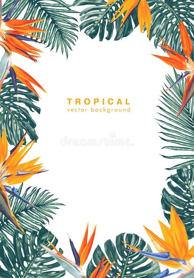 Bakgrund med ramen som göras av tropiska sidor och blommor med stället för din text royaltyfri illustrationer