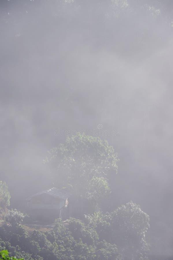 Bakgrund med tät dimma royaltyfria bilder