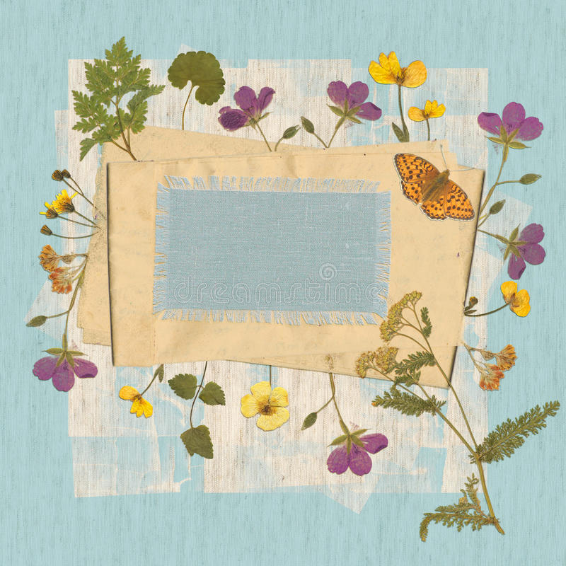 Bakgrund med torkade lösa blommor och gammalt papper Utrymme för text royaltyfri fotografi