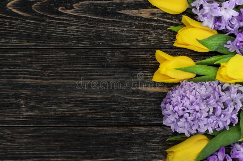Bakgrund med tulpan och hyacinter arkivfoto