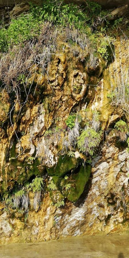 Bakgrund Nyckfulla klippor som täckas med mossa och växter Ett sällsynt naturligt fenomen - att gråta vaggar royaltyfri fotografi