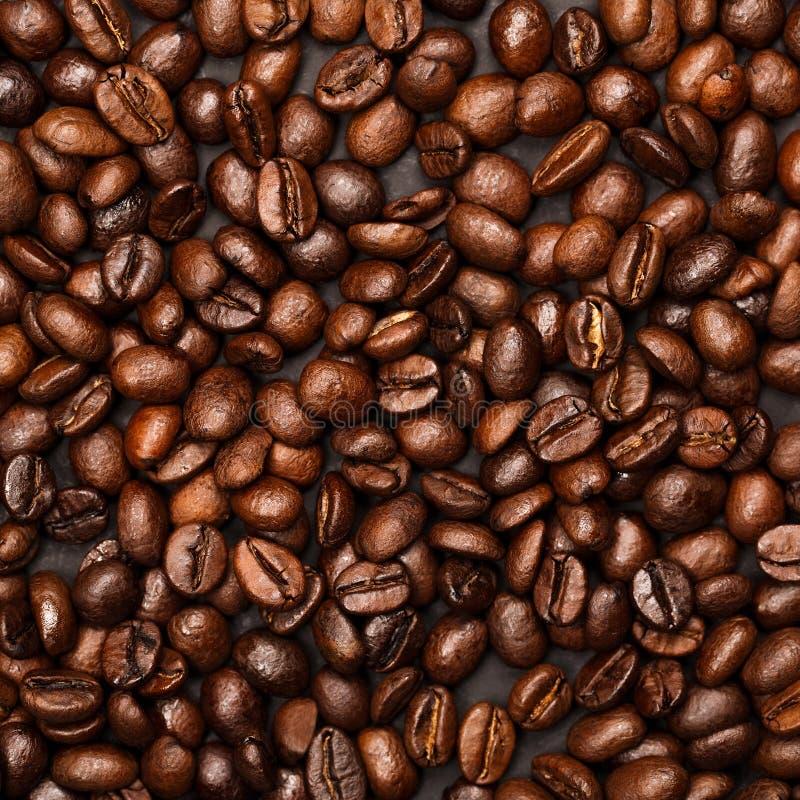 Bakgrund som göras av ny-grillade kaffebönor arkivfoton
