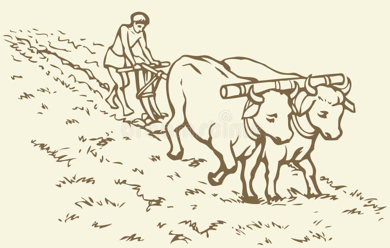 bakgrund som tecknar den blom- gräsvektorn Primitivt jordbruk Bonde behandlat fält vektor illustrationer