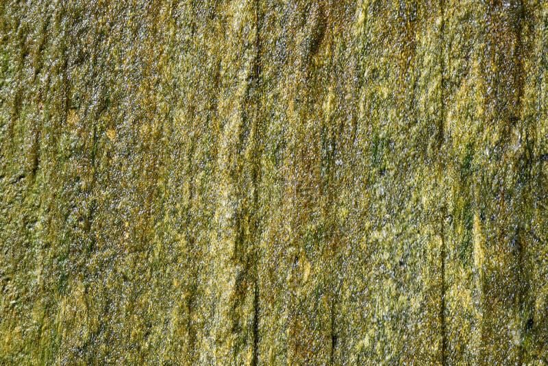 Bakgrund textur som ?r v?t stenar v?ggen med vattendroppar royaltyfri fotografi