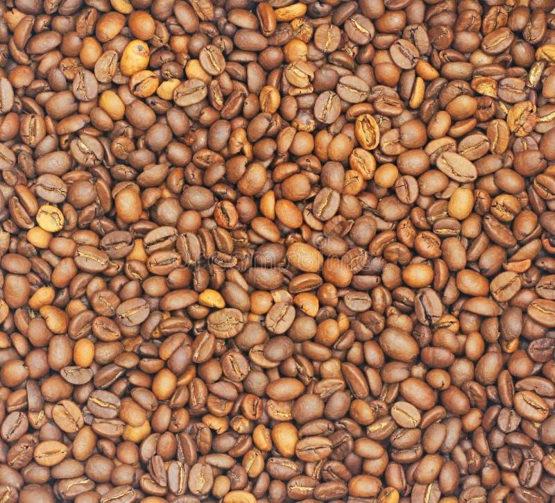 Bakgrunder många kaffebönor är brunt och har en angenäm arom royaltyfri fotografi