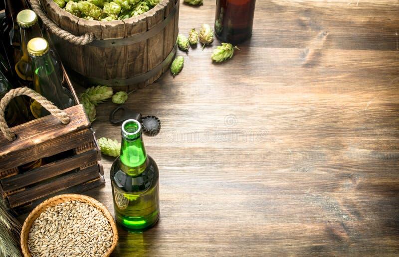 bakgrundsöl innehåller lutningingreppet Öl i flaskor och ingredienser arkivbilder
