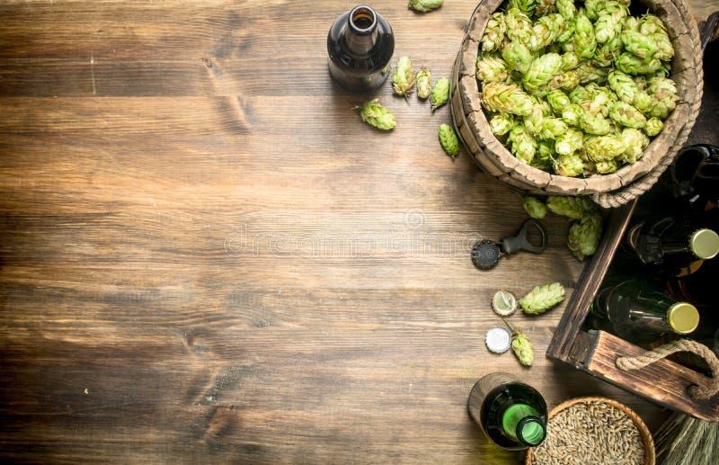 bakgrundsöl innehåller lutningingreppet Öl i flaskor och ingredienser royaltyfri bild
