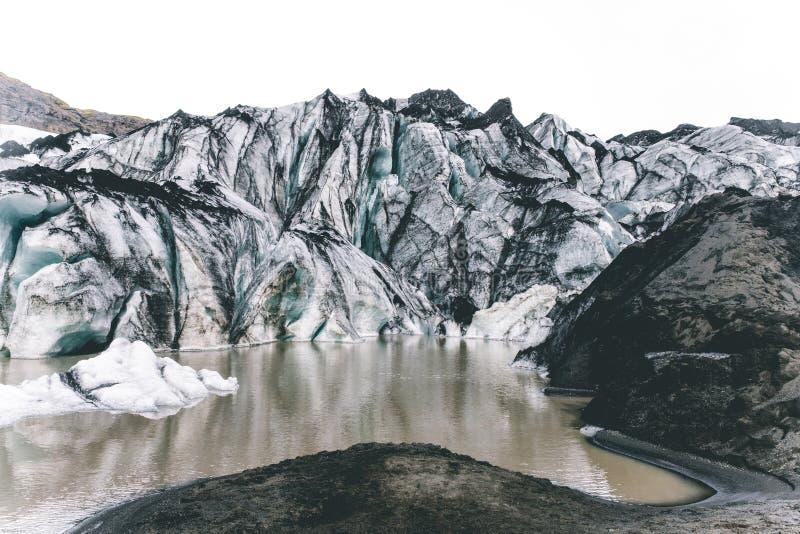 bakgrundsb?nor st?nger den isolerade naturstr?mgrodden upp white royaltyfri fotografi