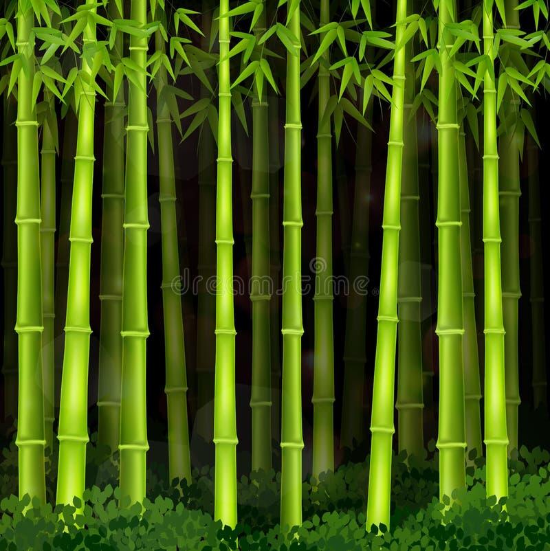Bakgrundsbambuskog på natten royaltyfri illustrationer