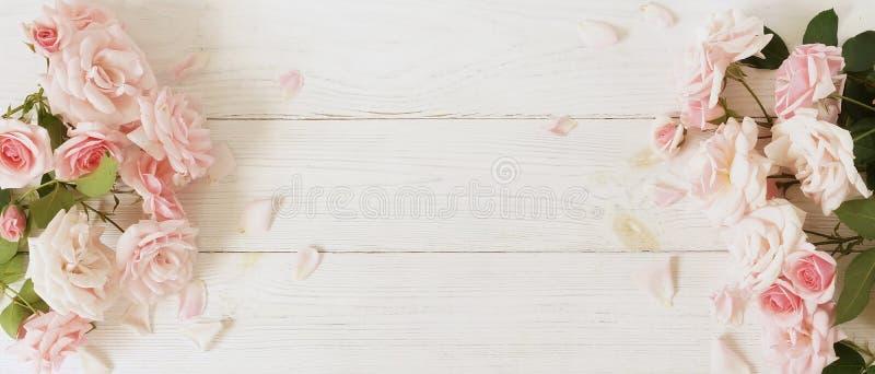 bakgrundsbanret blommar datalistor little rosa spiral Bukett av härliga rosa rosor på vit träbakgrund royaltyfri bild