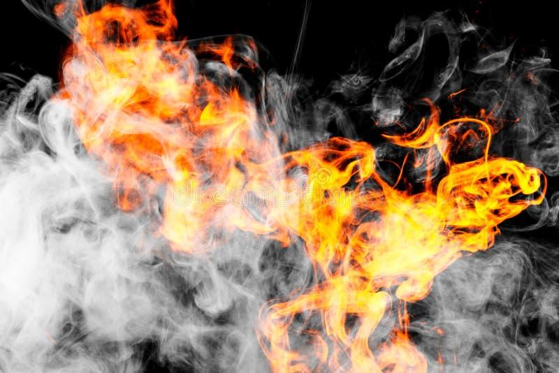 bakgrundsbrand flamm hög bildupplösning arkivbild