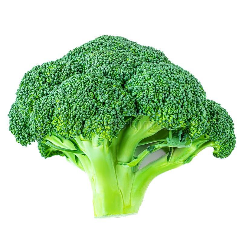 bakgrundsbroccoli isolerade white Ny grön broccoligrönsak tätt upp royaltyfri foto