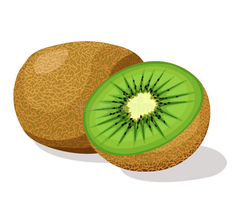bakgrundsclosefrukt isolerade kiwien över övre white royaltyfri illustrationer