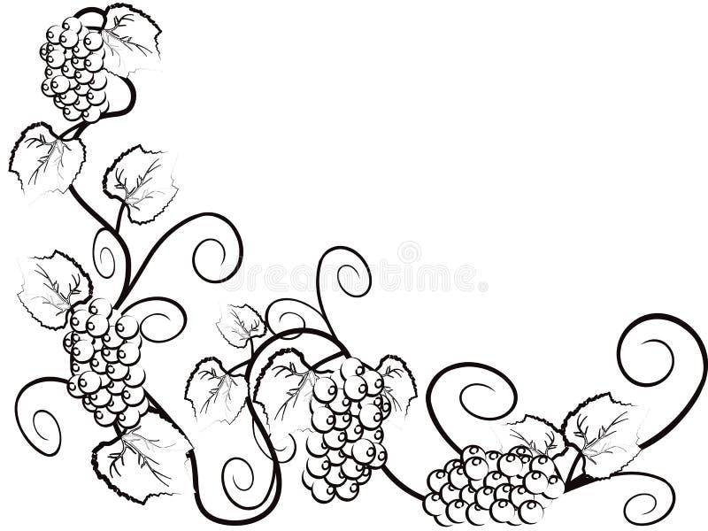 bakgrundsdruvavine royaltyfri illustrationer