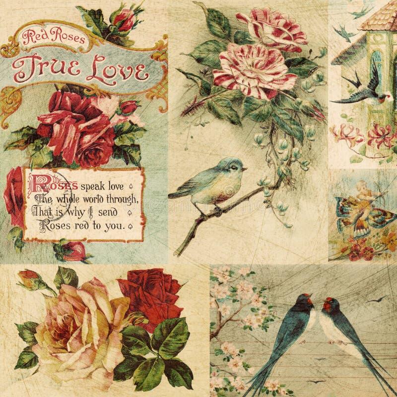 bakgrundsfågelcollage blommar tappning arkivfoto