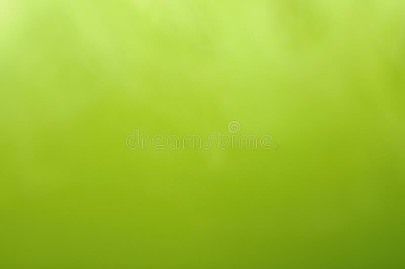 bakgrundsgreen arkivfoton