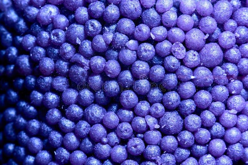 Bakgrundshög av violetta små bollar för bad royaltyfri fotografi
