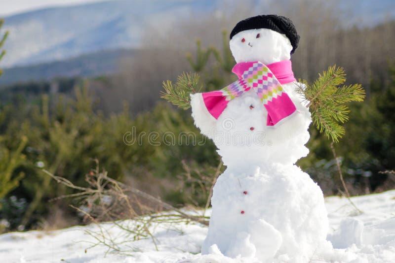 bakgrundskortjulen man nytt s-snowår arkivfoton