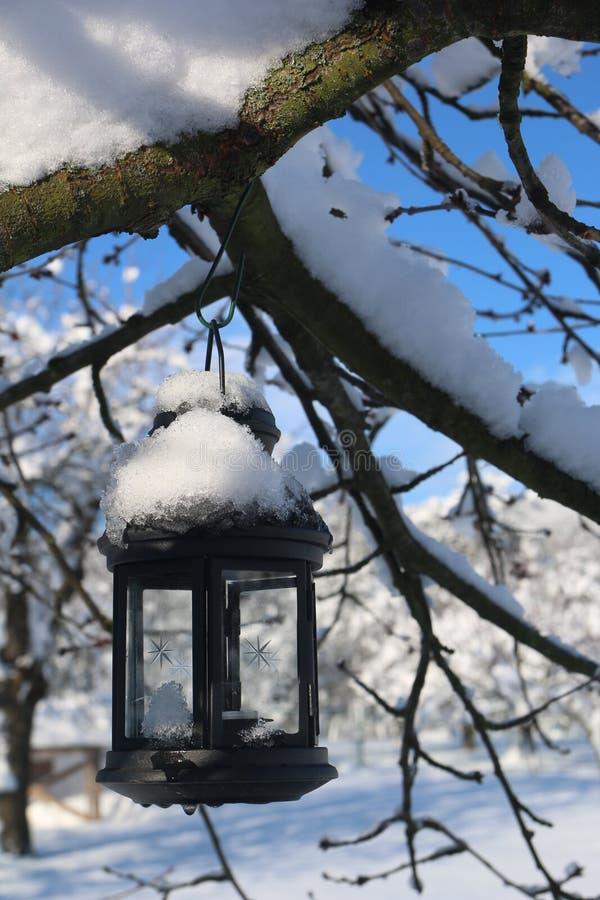 bakgrundskula som kallar sunen för lampa för dagörtlampa arkivbilder