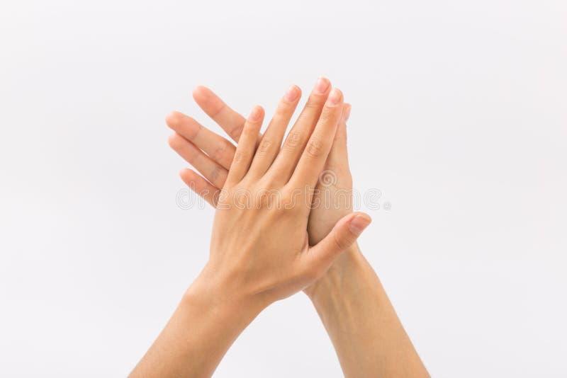 bakgrundskvinnlign hands white gester royaltyfri foto