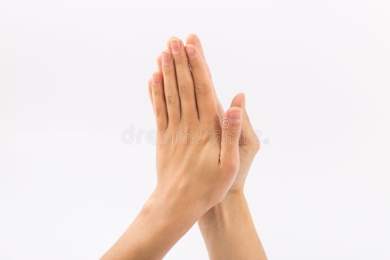 bakgrundskvinnlign hands white gester royaltyfria foton