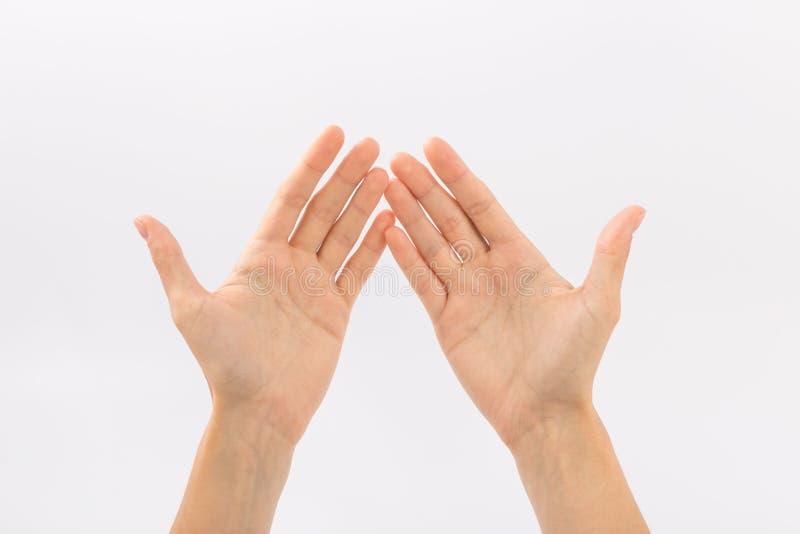 bakgrundskvinnlign hands white gester royaltyfria bilder