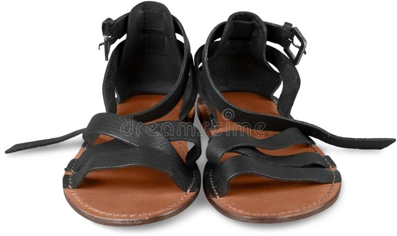 bakgrundskvinnlign shoes white arkivfoto