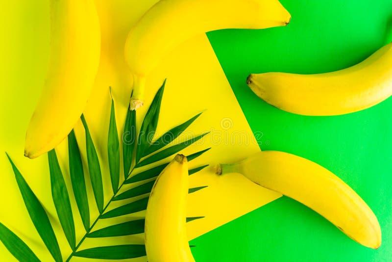 bakgrundsmodell av den nya gula bananer och palmbladet på en ljus gul och grön bakgrund Top besk?dar arkivbilder
