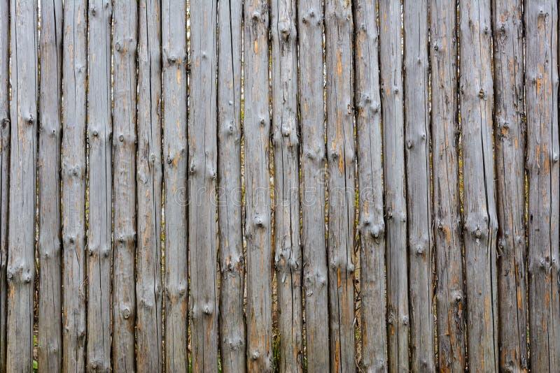 Bakgrundstextur av det gamla gråa trästaketet från hela journaler med fnuren Sjaskigt staket royaltyfri fotografi