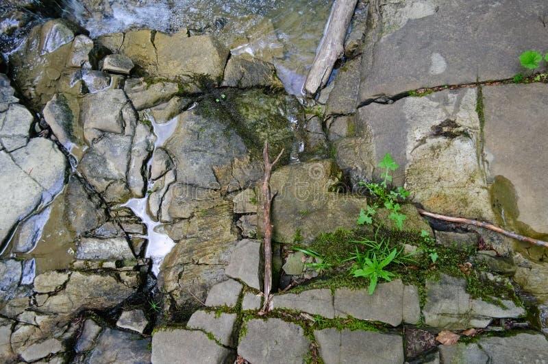 Bakgrundstextur av knäckt vaggar nära bergfloden Torr sten med sprickor som geometriska former Carpathian berg, royaltyfri fotografi