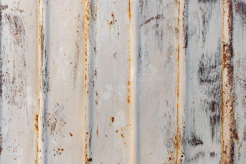 Bakgrundstextur av rostig järncladding på den yttre väggen eller taket av en byggnad med skalning av beige målarfärg royaltyfria bilder
